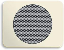 BUSCH JAEGER 8253-22G AudioWorld, Zentralscheibe für Einbau-Lautsprecher, Zentralscheibe für Einba