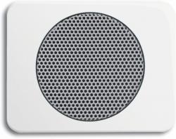 BUSCH JAEGER 8253-24G AudioWorld, Zentralscheibe für Einbau-Lautsprecher, Zentralscheibe für Einba