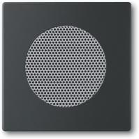 BUSCH JAEGER 8253-885 AudioWorld, Zentralscheibe für Einbau-Lautsprecher, Zentralscheibe für Einba